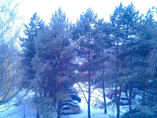 Gz-brn-snow-20120215_81