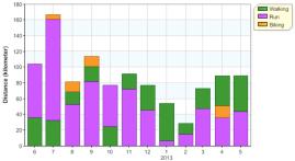 distance month 12m activities 20130531