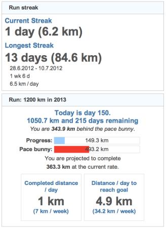 running goals 20130531