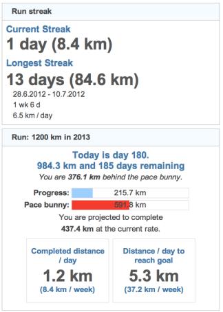 running goals 20130630