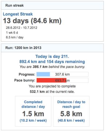 running goals 20130731