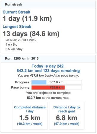 running goals 20130831