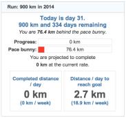 running goals 20140131