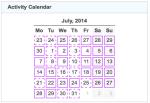gz run activity calendar 20140731